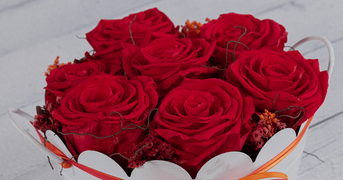 How Long Do Preserved Roses Last Sense Ecuador 174