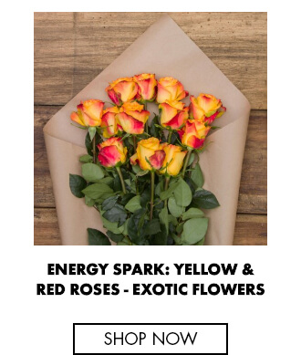 Energy Spark: Yellow & Red Roses - Fresh Roses