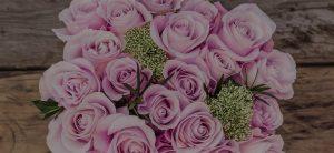 Ecuadorian roses for romantic occasions