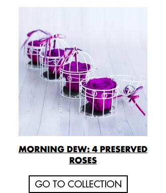 Morning Dew - Preserved Roses