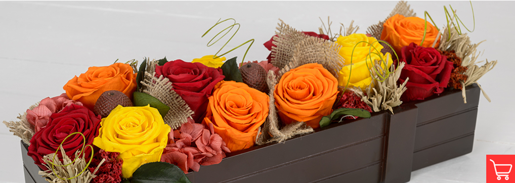 Pumpkin orange roses meaning and occasions