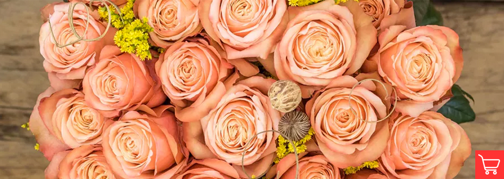 Dusty orange roses meaning and occasions