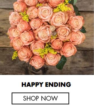 Blush: Pink Roses - Fresh Roses