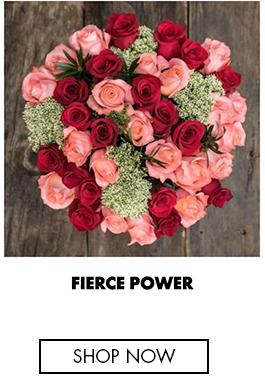 Fierce Power
