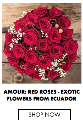 AMOUR: RED ROSES - EXOTIC FLOWERS FROM ECUADOR