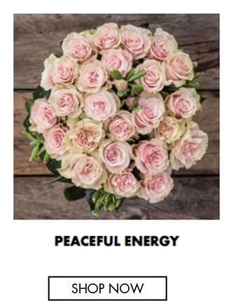 Peaceful Energy