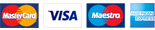 MasterCard Visa Maestro American Express