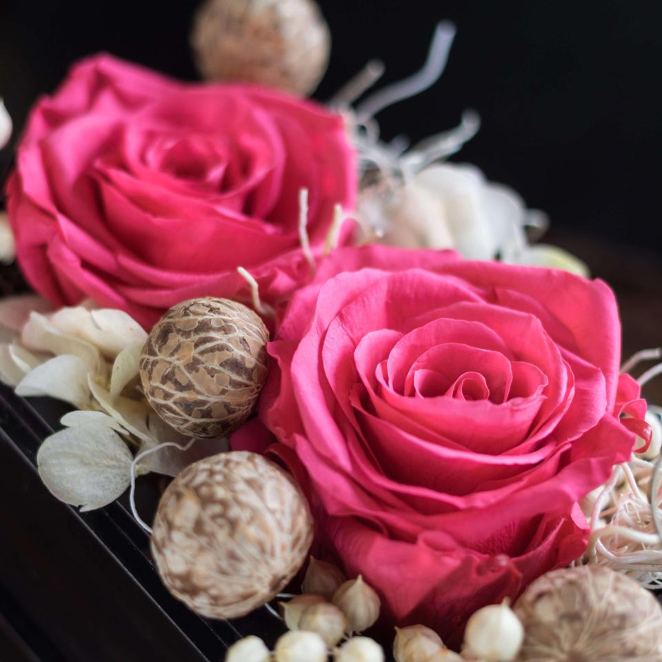 Tender Blush: 4 Preserved Roses