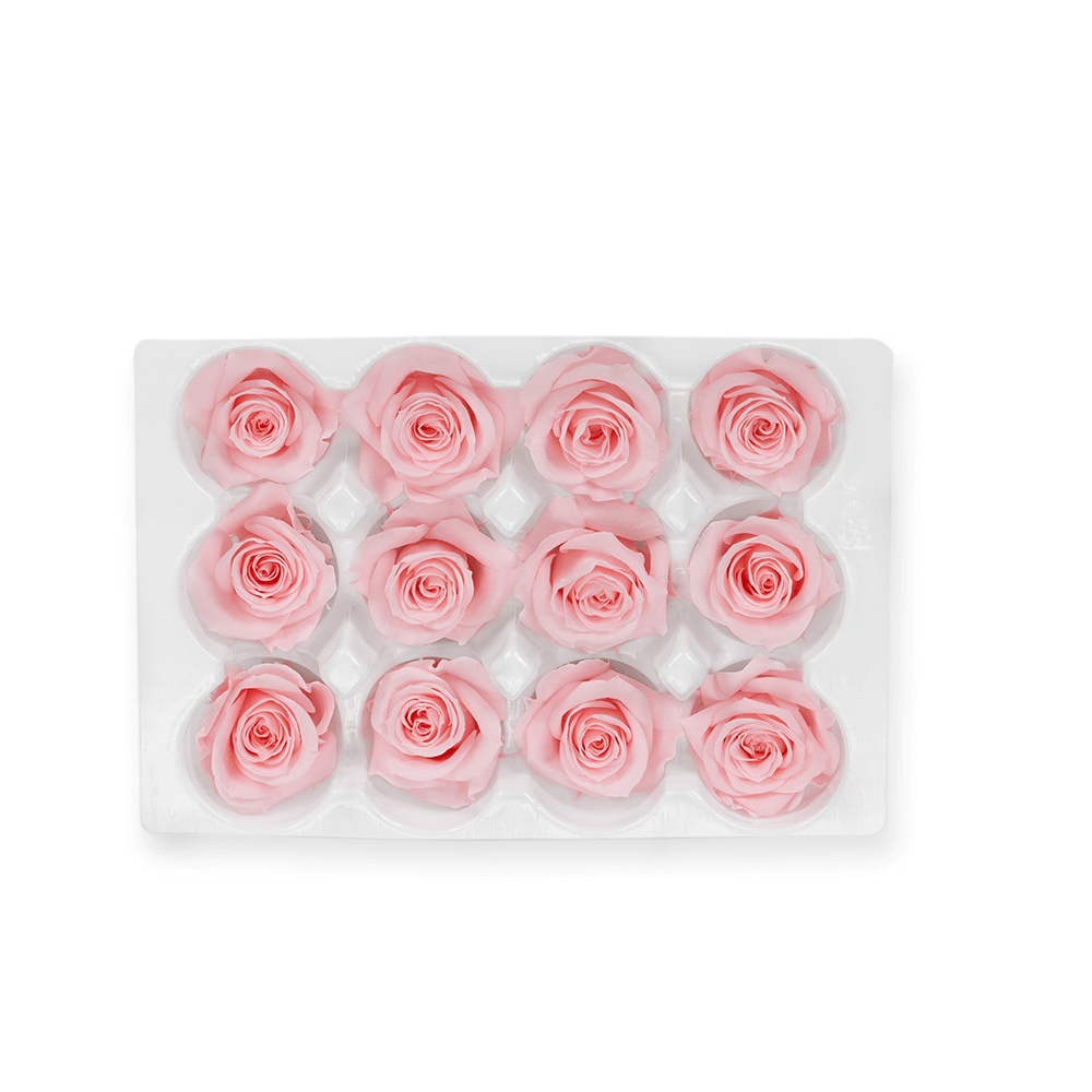 Box of 12 Mini classic preserved roses