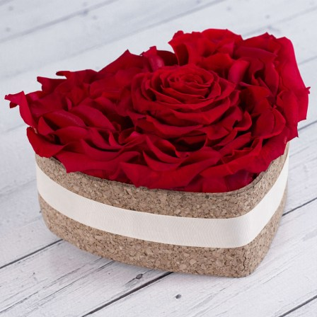 Cool Maroon - Preserved Roses