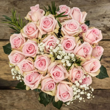 Blush: Pink Roses - Exotic flowers from Ecuador