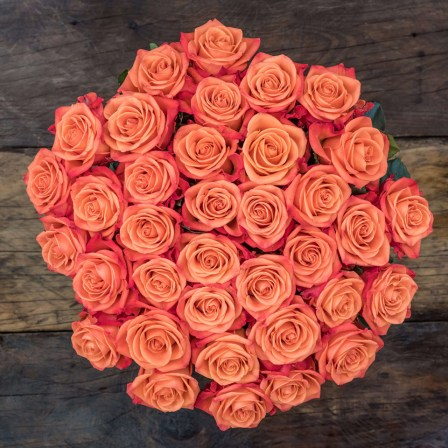 Just Joy: Orange Roses - Exotic flowers from Ecuador