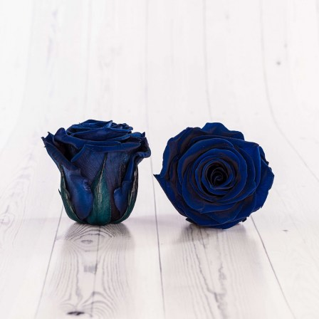 02_blue_roses_button